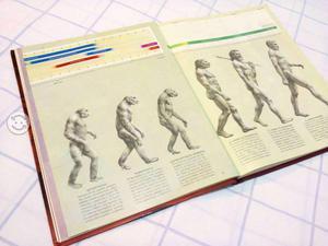 El hombre prehistorico de time life