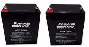 Baterías Para Scooter Razor E100 E125 Evolt 5amp 2pzs