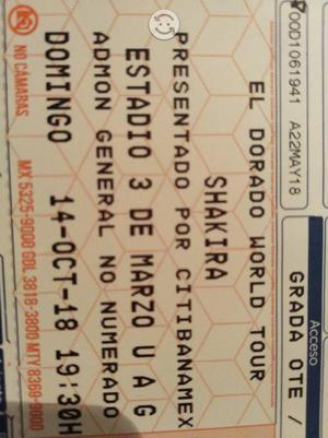 Shakira concierto