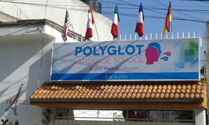 Polyglot Inglés, Francés y Alemán de una manera natural y