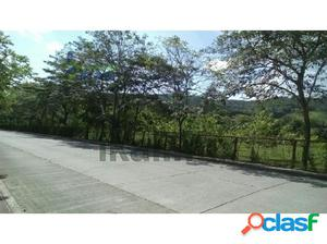 Venta Terreno 56,344 m² colonia Escolin de Olarte Poza Rica