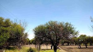 terreno en venta Carretera Mex-Qro zona Tremec
