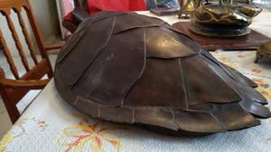Escultura De Bronce Caparazón De Tortuga Gigante
