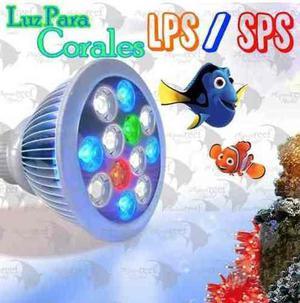 Lampara Foco Led Para Acuario Marino Corales Y Peces Radion