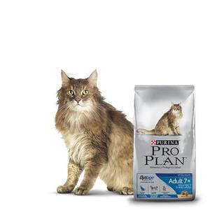 Proplan Cat Adulto 7+ Alimento Para Gato 3kg Petguru