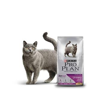 Proplan Cat Urinary Alimento Para Gato 3kg Petguru