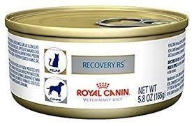 Recovery Royal Canin Gatos O Perros Pack De 6 Latas