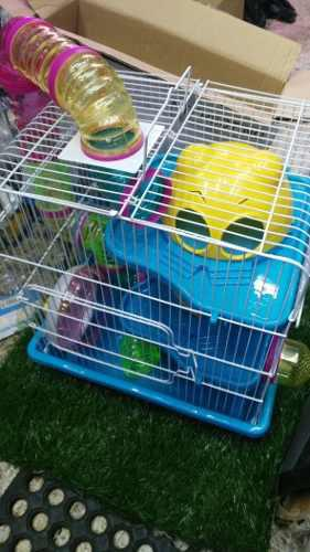 Habitat Casa Fresno Para Hamsters O Gerbo 35x26x40