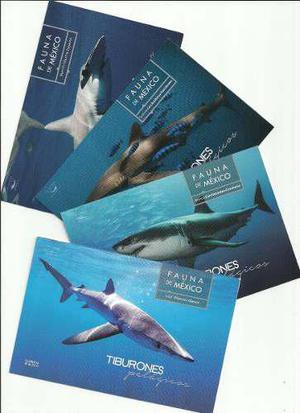 2016 Fauna México Tiburones Pelágicos 4 Tarjetas