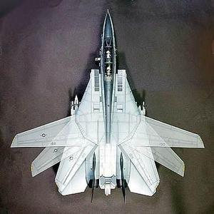 Avión F-14 Tomcat Black Knights Escala 1/32 Tamiya 60313