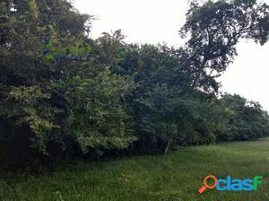 Venta Terreno rancho 11 hectáreas Tamiahua Veracruz, San