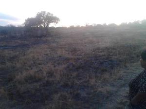Terreno en venta en Comunidad de la Mora, San Juan del Río,