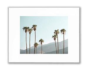 Palm Tree Wall Art Picture, Palm Springs Hd Decoracion De Pa