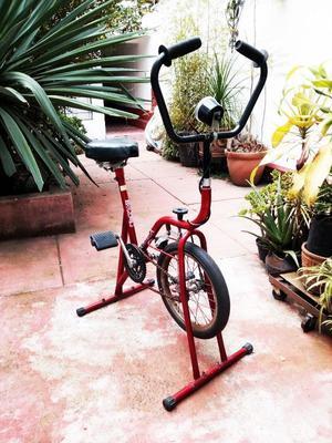 Bicicleta Fija vintage