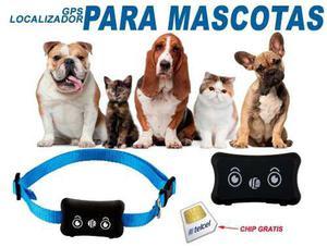 Gps Localizador Para Mascotas A Prueba De Agua