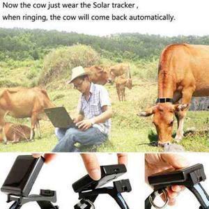 Gps Localizador Rastreador Ganado Vaca Solar Pila Dura 25 Di