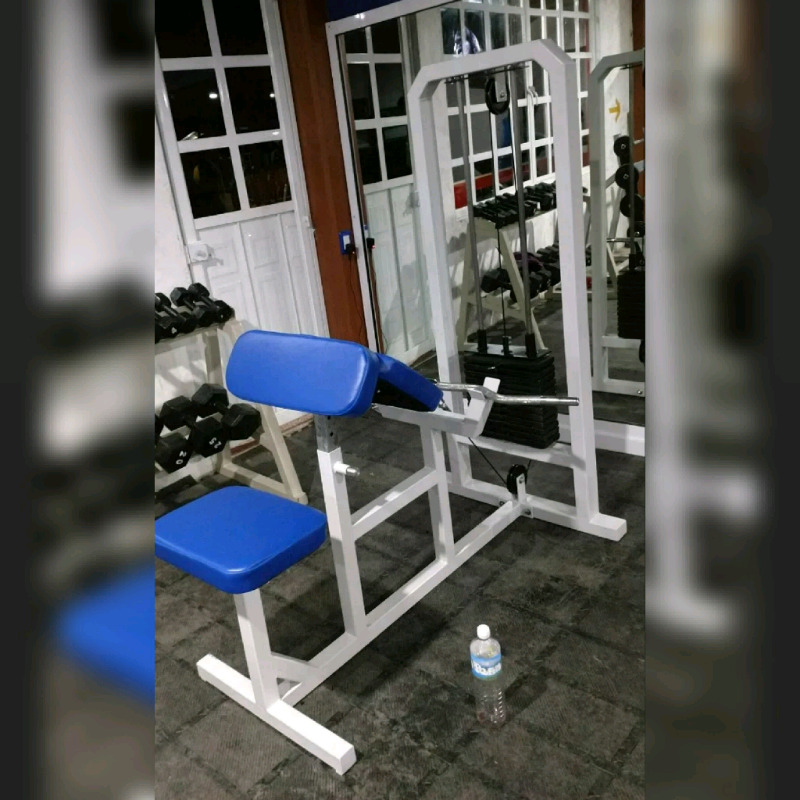 Maquina Predicador Gimnasio Cracken Gym