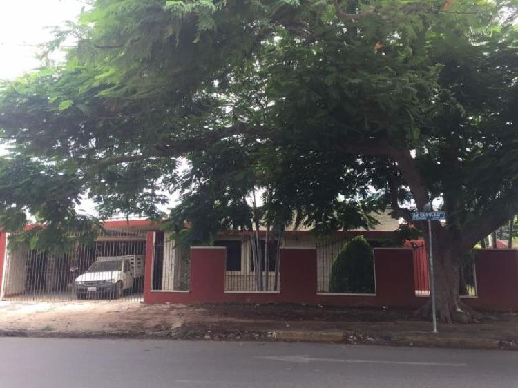 Casa en Renta sobre Av.Cupules / House for Rent on