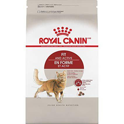 Alimento Croqueta Gato Royal Canin Adult Fit 3.18 Kg