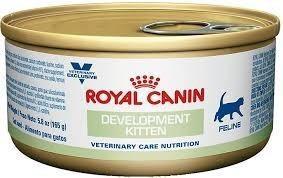 Development Kitten Feline Royal Canin Pack 18 Latas