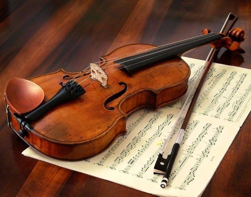 Clases de violín Particulares $200