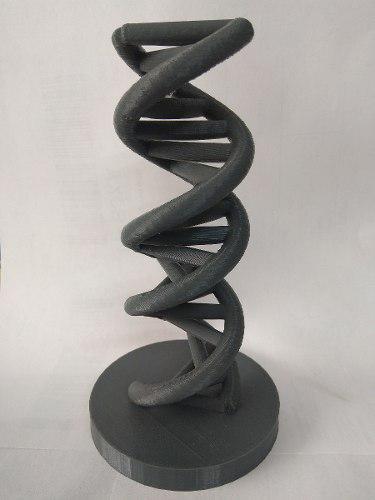 Escultura Adn 15 Cm Altura, Impresión 3d, Biología,