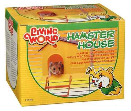 Casa Para Hamster Con Escalera