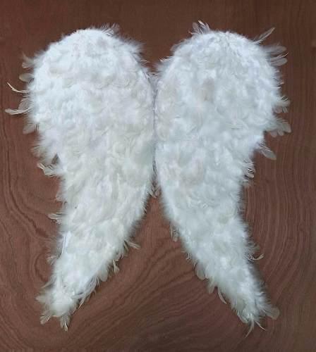 Alas De Pluma Para Angel De 70 Cm