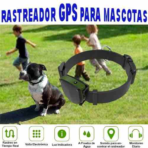 Rastreador Gps Mascota Contra Agua Perro Localizador Sim