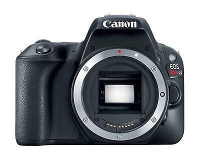 Canon Eos Rebelde Sl2 24.2 Megapíxeles Cámara Digital Slr