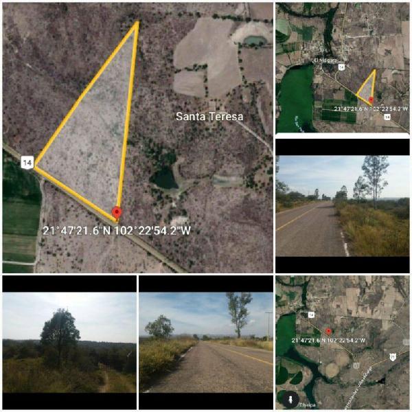 Terreno rústico en venta 12 has 370 m de frente a carretera