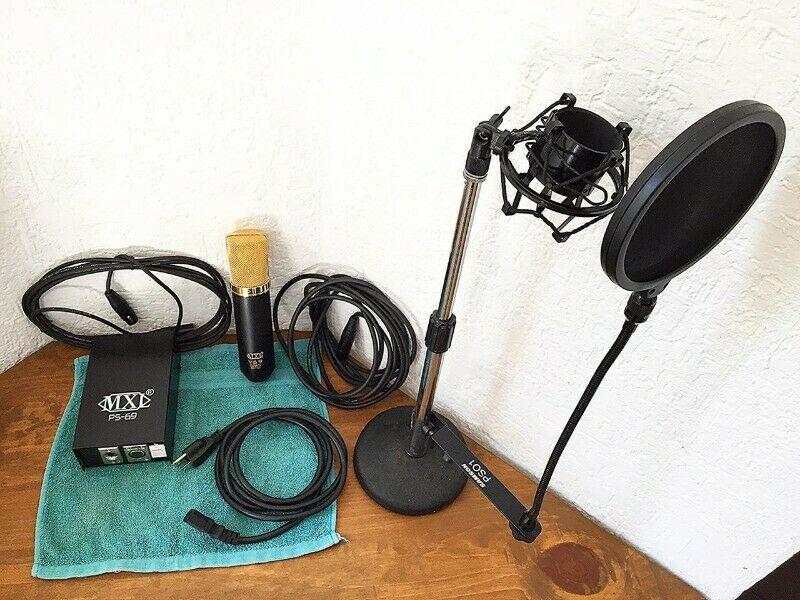Micrófono profesional a condensador y con bulbo: Para