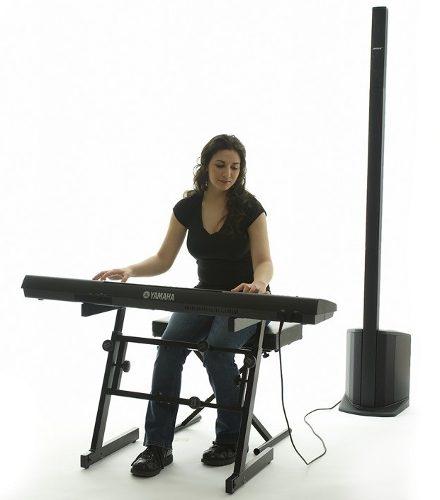 Sistema De Audio L1 Compact Bose Con Microfono De Regalo !!