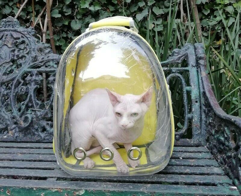 Transportadora Mochila Backpack.