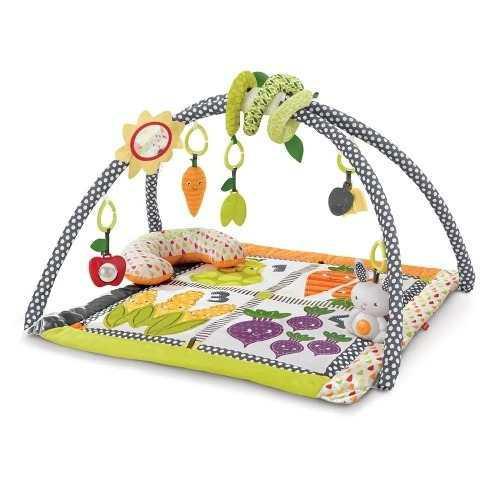 Gimnasio Para Bebes Fisher Price Tiny Garden Nuevo