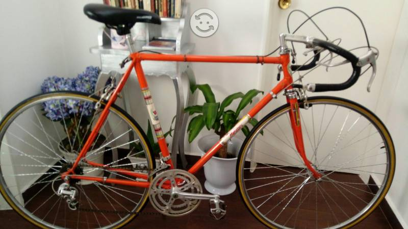Bicicleta coleccion windsor record de la hora 70s