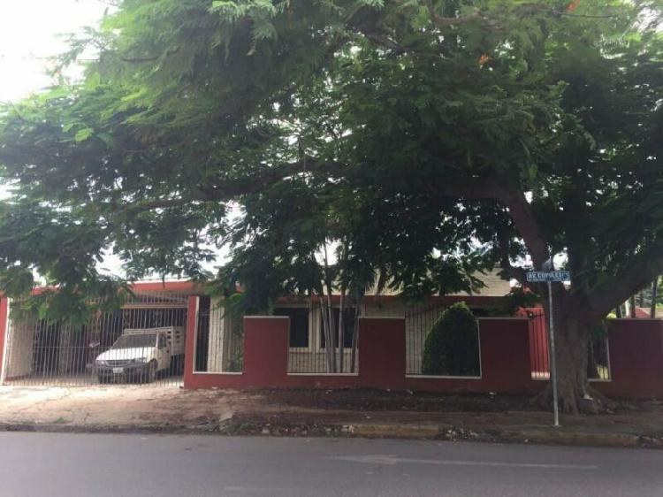 Casa en Renta sobre Av.Cupules