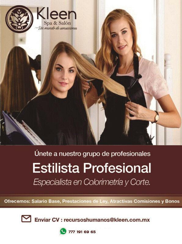 Estilista Profesional