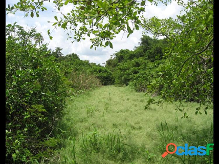 Rancho en venta en Tizimin Yucatàn