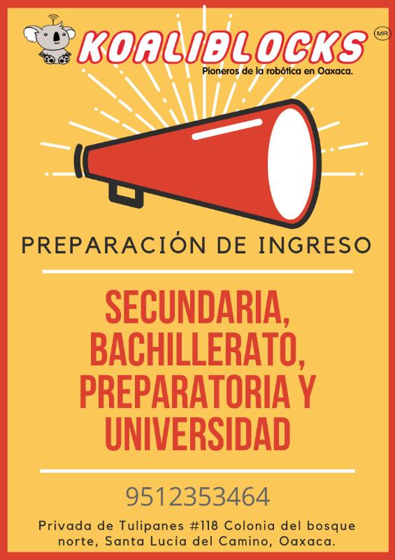 Cursos de regularización académica.