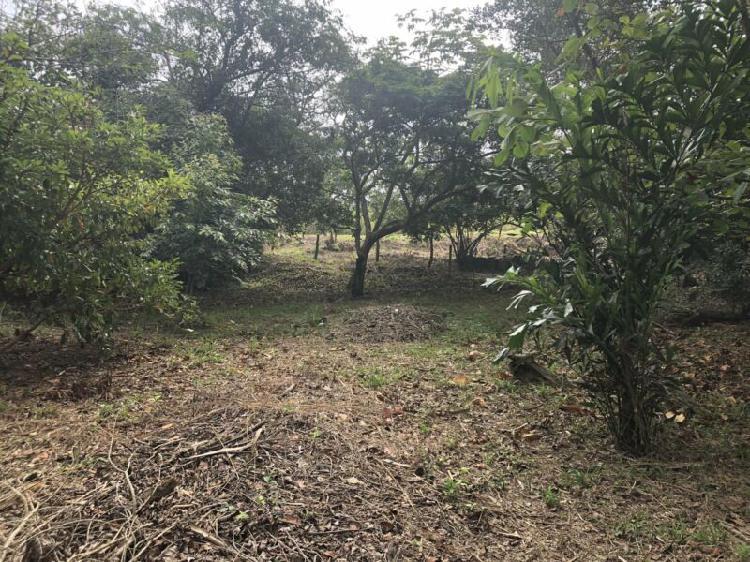 Venta de terreno en Residencial Las Olas, Veracruz