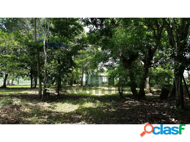 Venta Terreno 4,277 m² Juana Moza frente al río Tuxpan