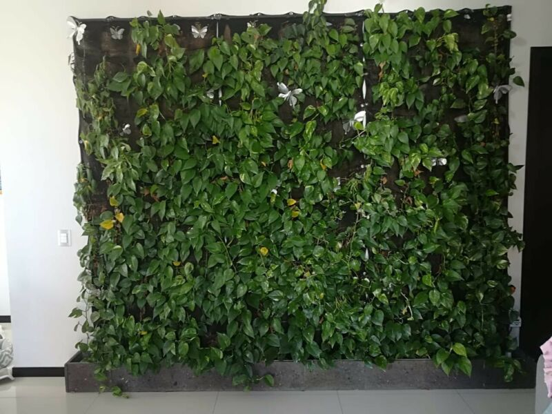 Jard n vertical estructura plastica para colgar posot class - Estructura jardin vertical ...