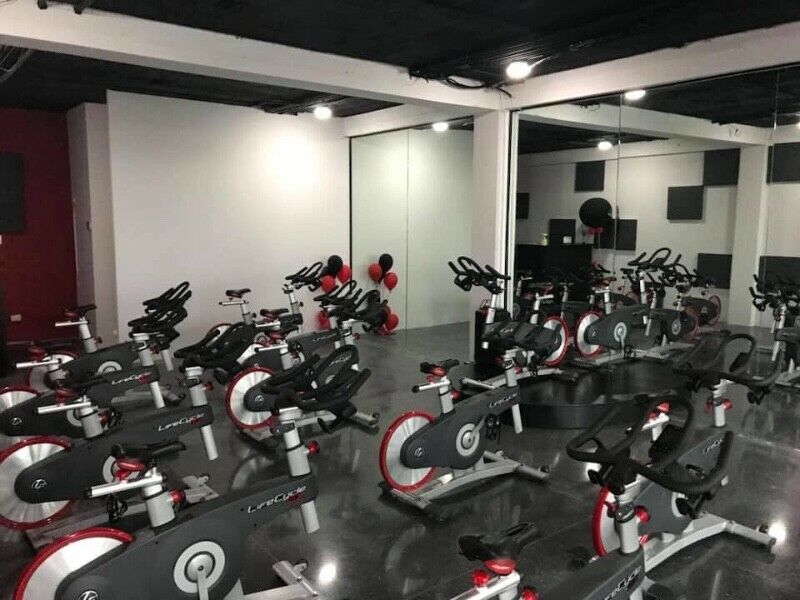 Lote de bicicletas life fitness Lifecicle GX