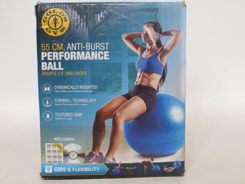 Pelota De Pilates O Yoga Golds Gym 55 Cm Relleno De Arena