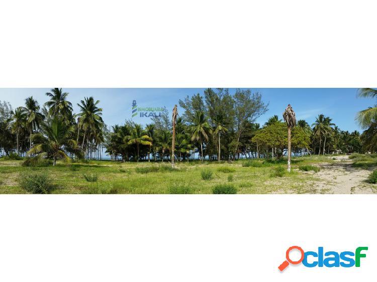 Venta Terreno una hectárea Playa Tuxpan Veracruz, La Barra