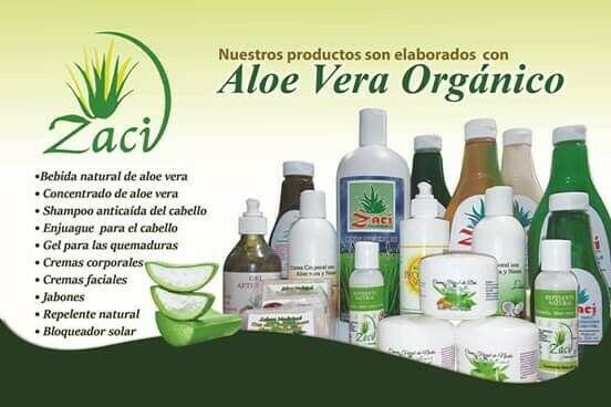 Se vende planta pocesadora de Sabila en Valladolid yucatan