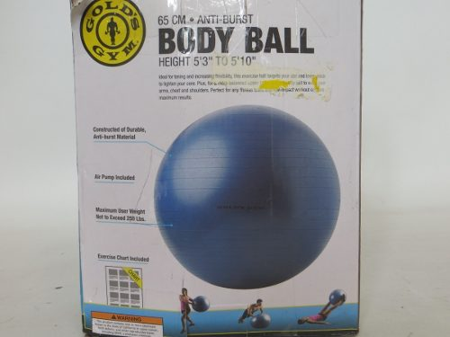 Pelota De Pilates O Yoga Golds Gym 65 Cm Anti Estallido