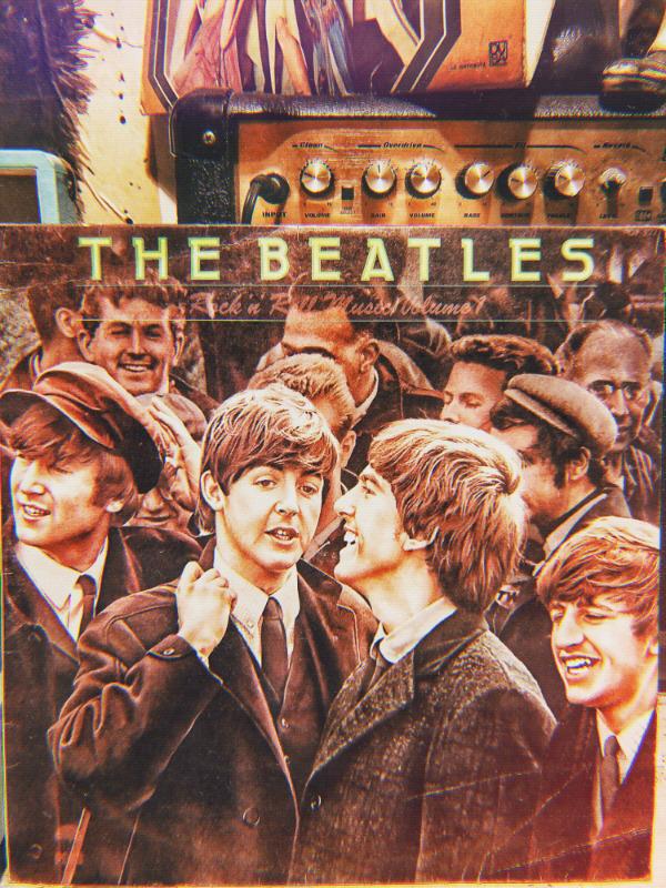 Disco LP vinil acetato 33 rpm The Beatles rock and roll