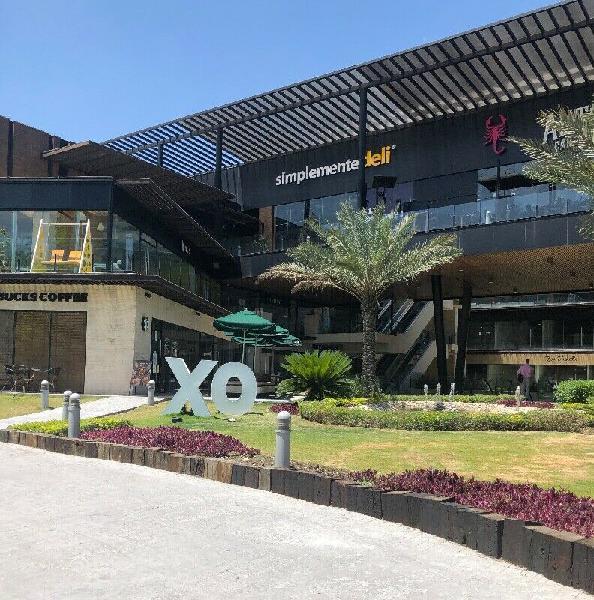 Local Plaza XO